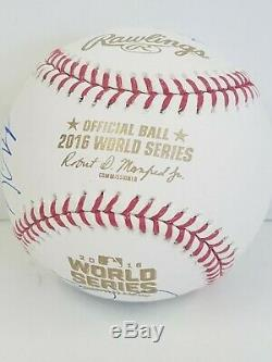 2016 Chicago Cubs Partial Team (11) Signed Baseball World Series Champions
